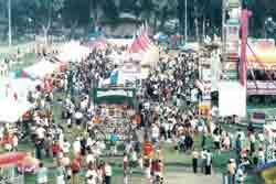 carnival ride pic 2