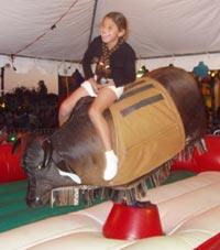 carnival ride pic 4